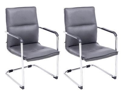 Set van 2 bezoekersstoelen Siittli kunstleer Grijs