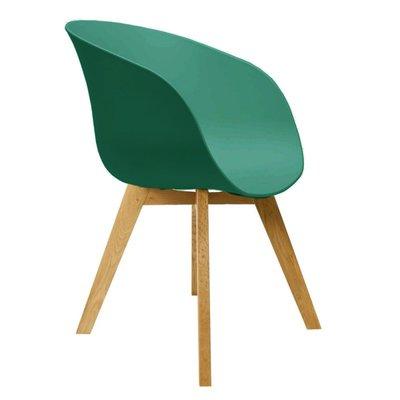 Eetkamerstoel Nocco Groen (design - modern - kunststof/hout)